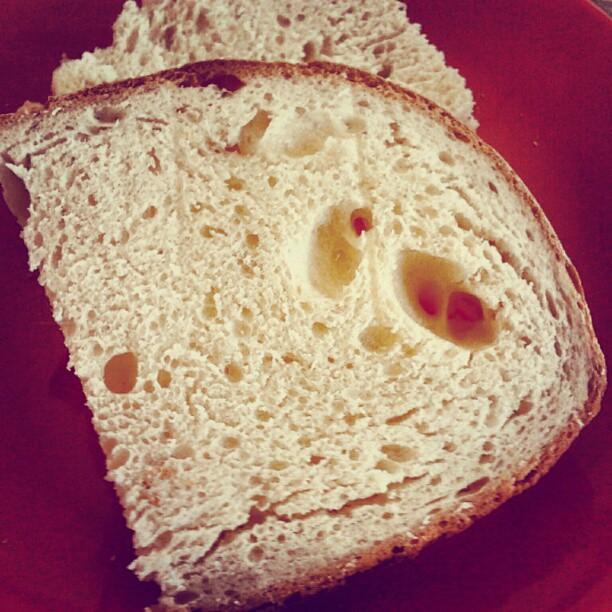 primo pane da pasta madre